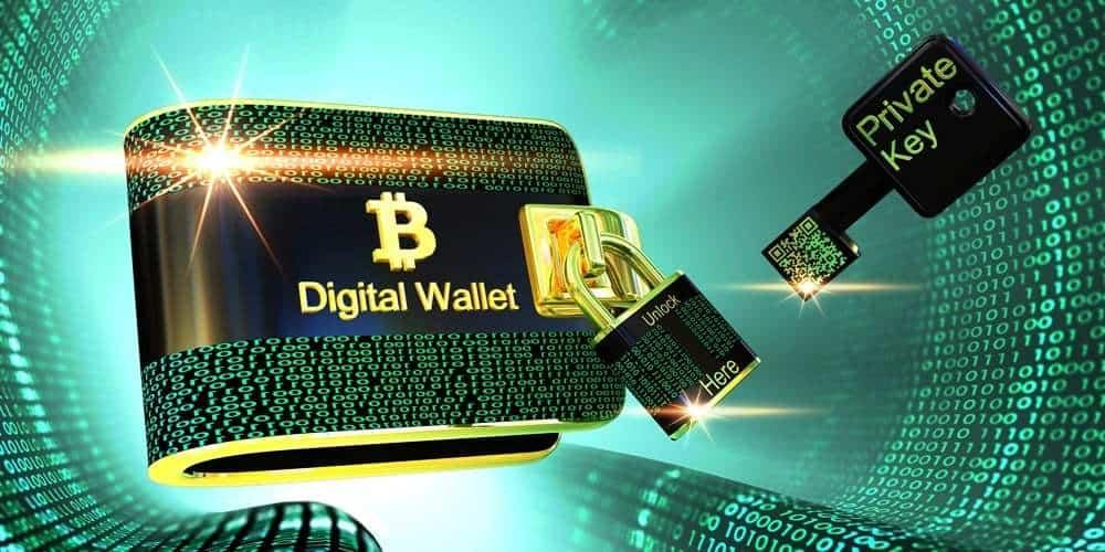 cartera Wasabi Bitcoin